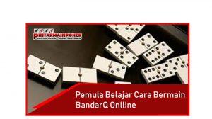 Pemula Belajar Cara Bermain BandarQ Online